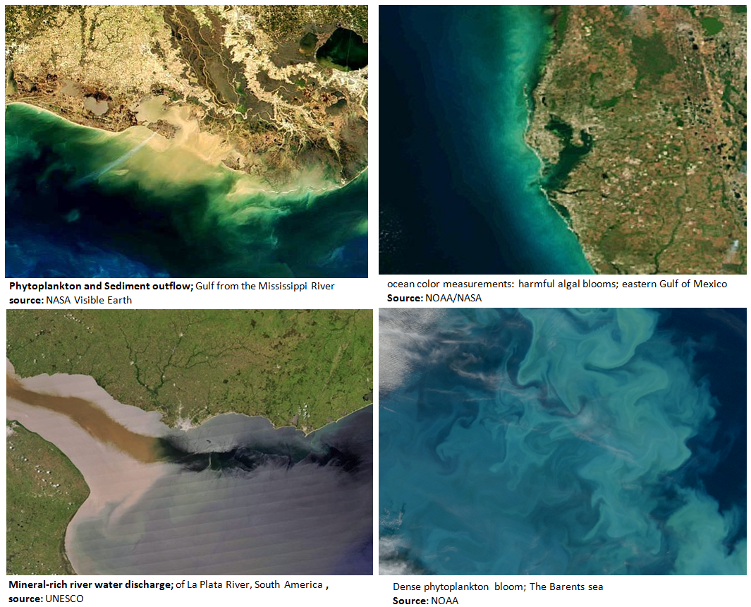 Ocean Color Remote Sensing as diagnostic tool for eutrophication